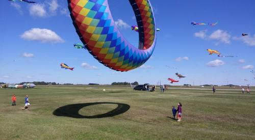 kite watchers.jpg